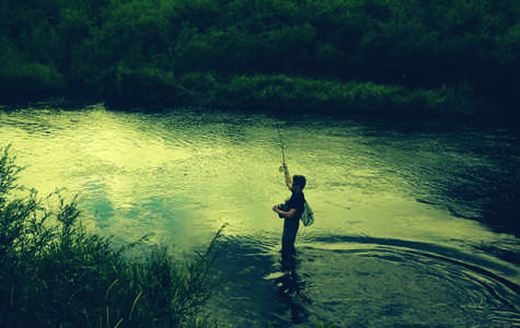 Get Your Cast On: How to Get Into Fly Fishing