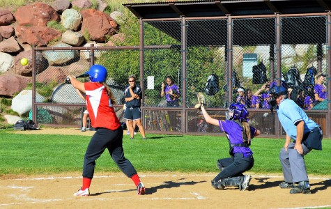 Softball Swings Into a New Season