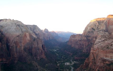 Adventures in a Crowded Zion