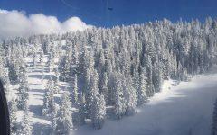 Snowfall Returns
