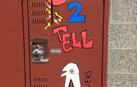 Truth About The Safe To Tell Locker