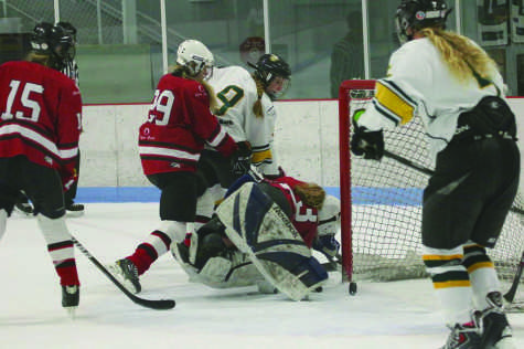 Girls Hockey Dominating Once Again