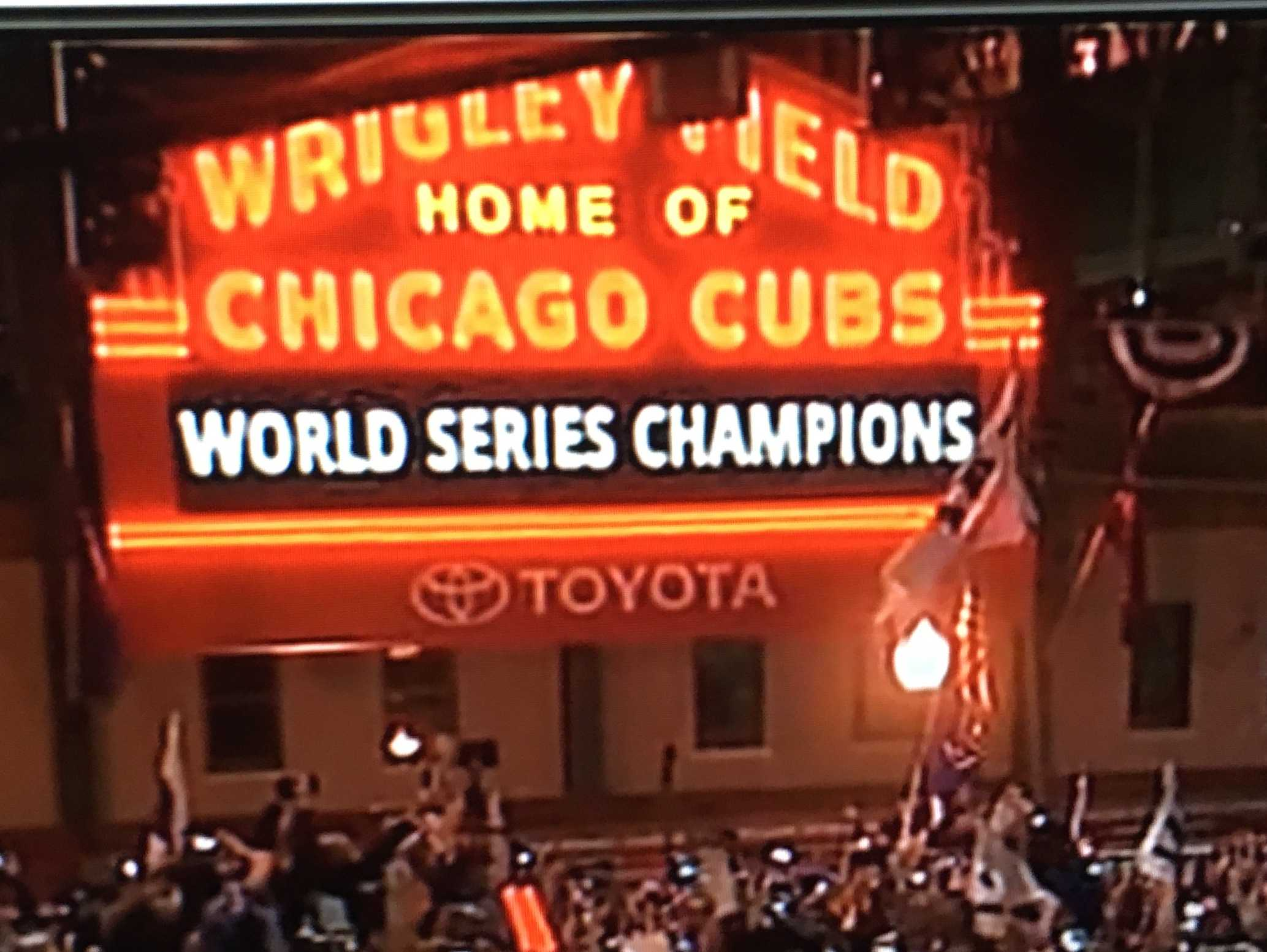 Cub fans go wild after they win.