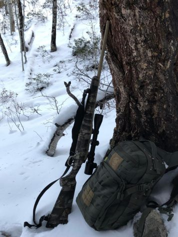 A picture of Ethan Linn's hunting rifle leaning on a tree.