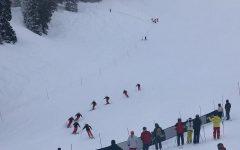 Synchro Skiing