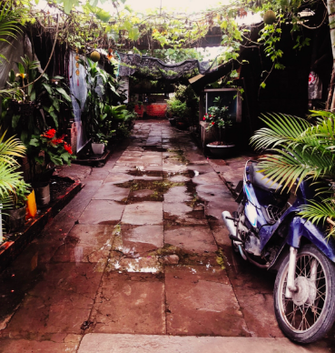Rainy, hidden alleyway covered with lush vegetation in the streets of Ho Chi Minh City, Vietnam.