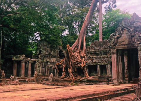 Mysterious+%E2%80%9CJungle+temple%E2%80%9D+in+Siem+Reap%2C+Cambodia.