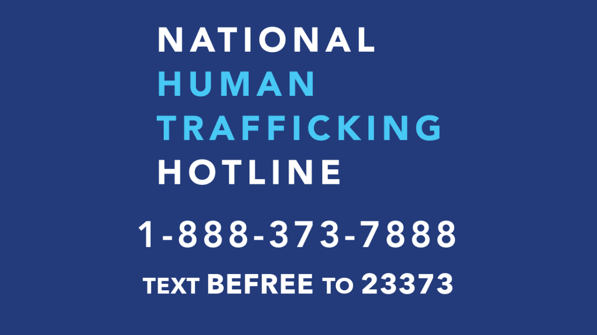 The National Human Trafficking Hotline phone number and text support.