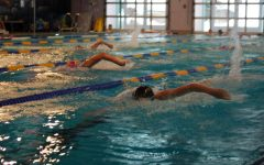 AHS girls swimming team heads to Western Slope Championships