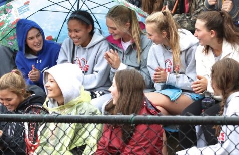 Seniors, Charlotte Howie, Bella Williams, Hayley Heinecken, Lauren Fox, Kat Goralka (from left to right) and Sammi Jaworski (bottom row), watch an AHS Men's Lacrosse game last Spring.
