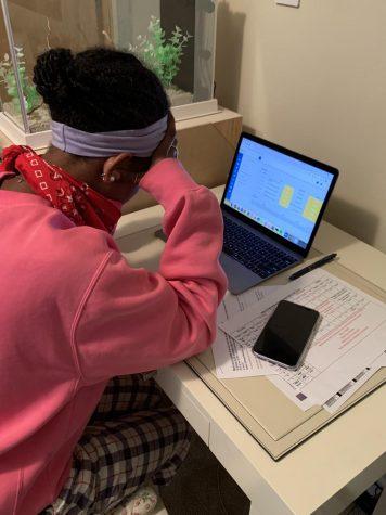 Tigist Peshek, an AHS Junior struggles with after school work online.